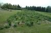 Dendrologická zahrada-2014