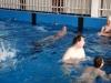 plavání-2011