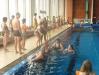 plavání-2013