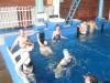 plavání-2014