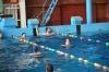 plavání-2016